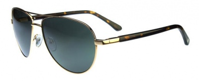 Hackett Sunglasses HSB 823 40P Gold